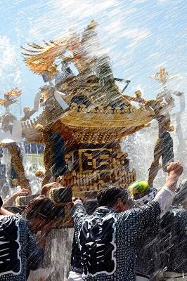 フォトコンテスト:水だ祭りだ!