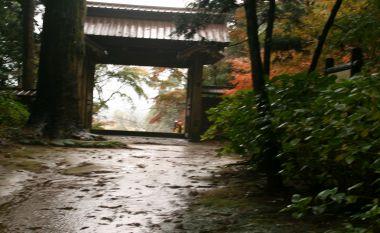 フォトコンクール:雨にケムル門2