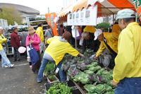 匝瑳市の誇る農産物を豊富に取り揃えています。03