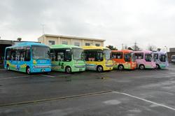 路線ごとに色分けされた循環バスの画像