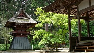 新緑の飯高寺の画像