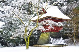 古刹に降る雪